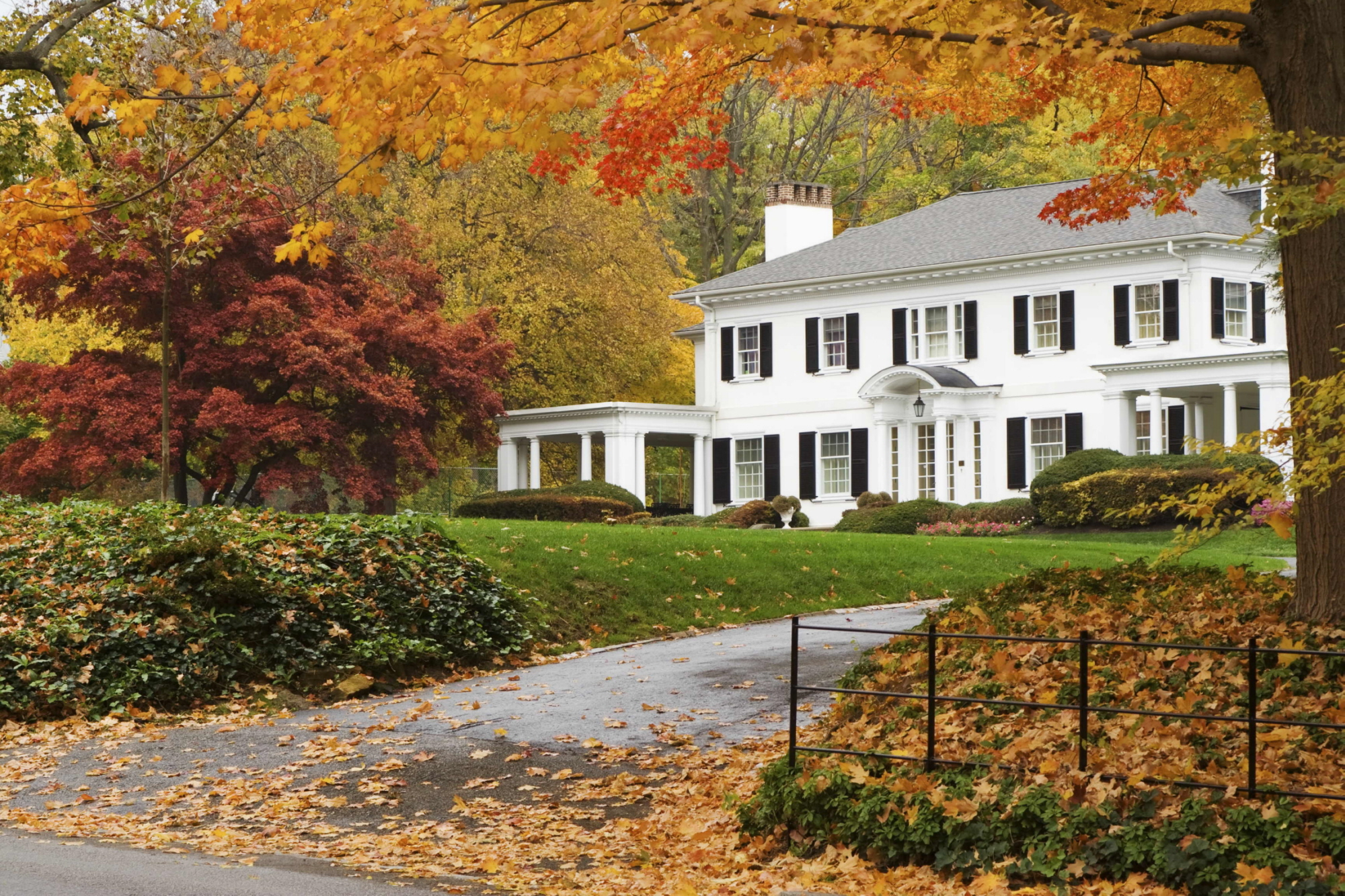 Image result for fall real estate